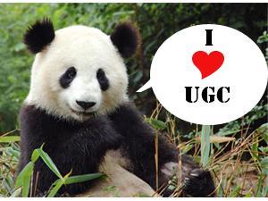 Google ama gli UGC